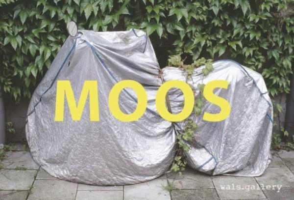 moos_flyer_quer_final3