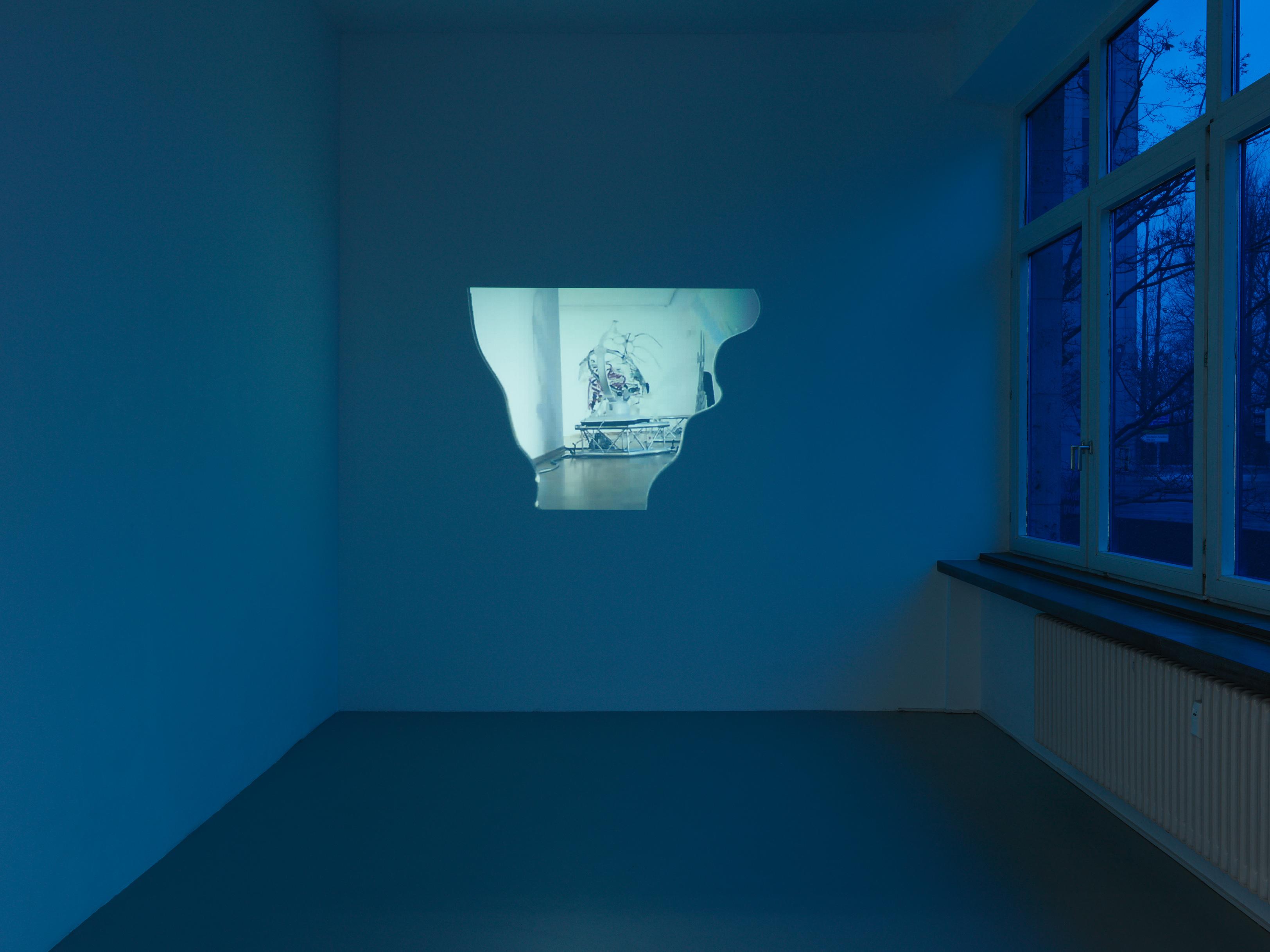 Image Credits: Installationsansicht, Katja Novitskova, »Transparenzen«, Kunstverein Nürnberg, 2015. Photo: Annette Kradisch, Nürnberg. Courtesy the artist; Kraupa-Tuskany Zeidler, Berlin