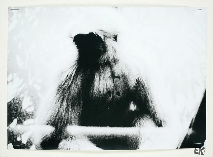 Erwin Kneihsl, (ohne Titel), Courtesy Galerie Guido W. Baudach, Berlin.