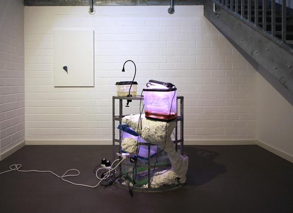 Jonas Tröger, Ausstellungsansicht, Scamper & the Donkeys, 2016, Installation, div. Materialien, 120x80x80cm o.T., 2016, Industrielle Siliziumkristalle in grundierter Leinwand, 100x70x12cm, Foto: Jonas Tröger