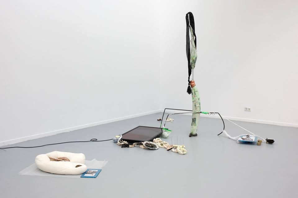 Mizu Sugai: All matter is spiritual tissue, Foto: © Akademie der Bildenden Künste Nürnberg