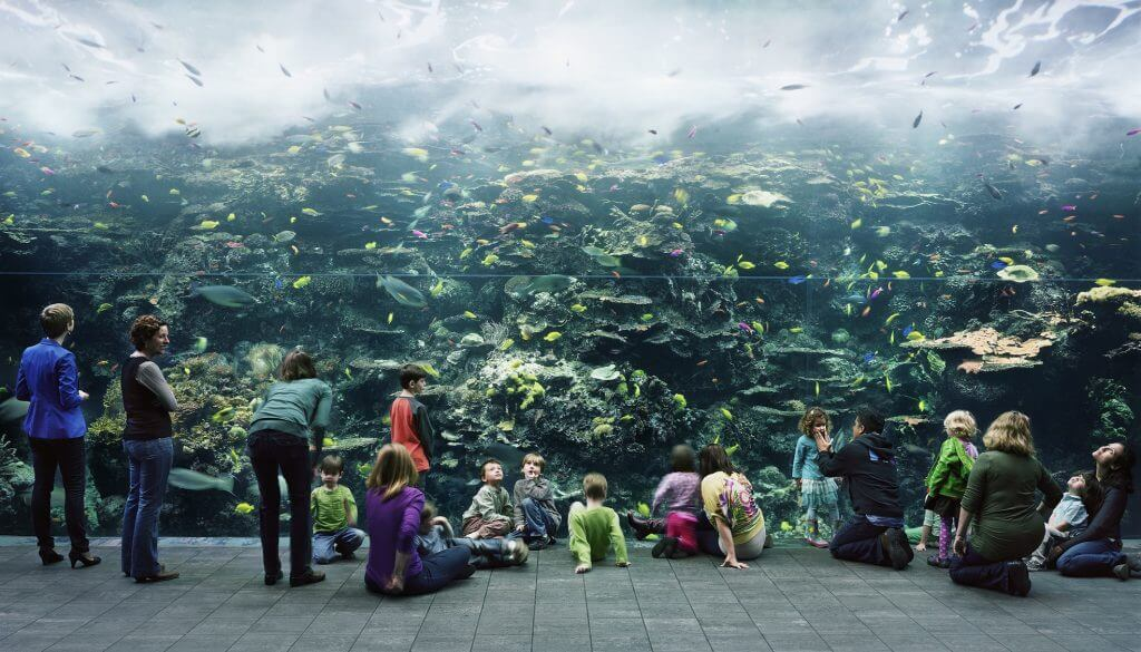 "Thomas Struth: ""Aquarium, Atlanta"", 2013, Chromogenic print, 207,5 x 357 cm. © Thomas Struth."