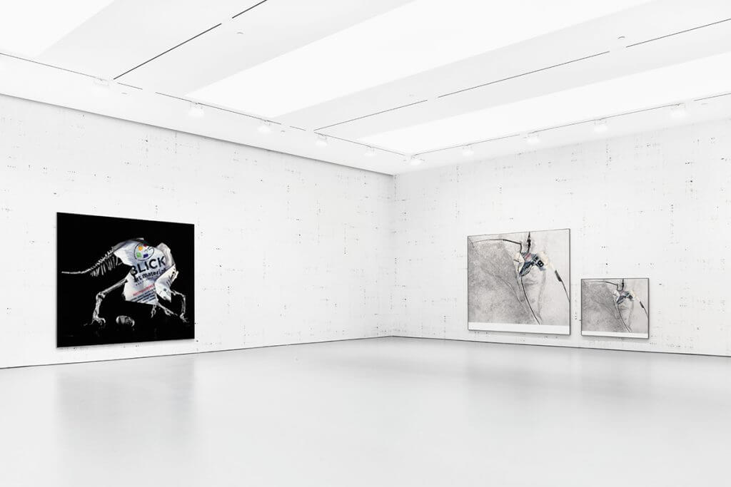"Installation view, ""Michael Riedel"", David Zwirner, New York, 2016."