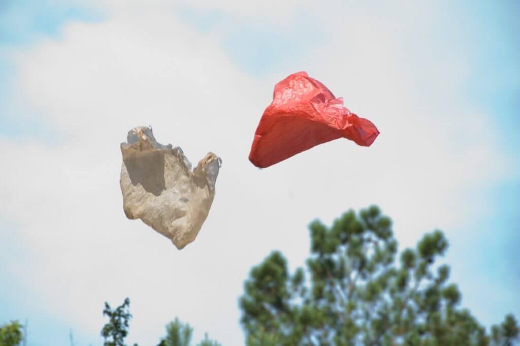 Ramin Bahrani – Plastic Bag, 2009, © Gigantic Pictures.