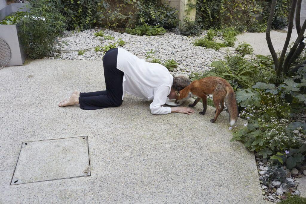 Juergen Teller: Charlotte Rampling, a Fox, and a Plate (Teller), London 2016, Copyright and courtesy the artist
