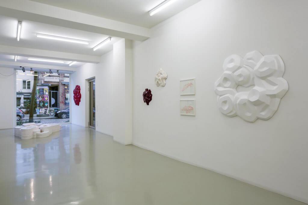 Installationsansicht Yevgeniya Safronova: Knoten und Kristalle  © Foto Hannappel, 2017