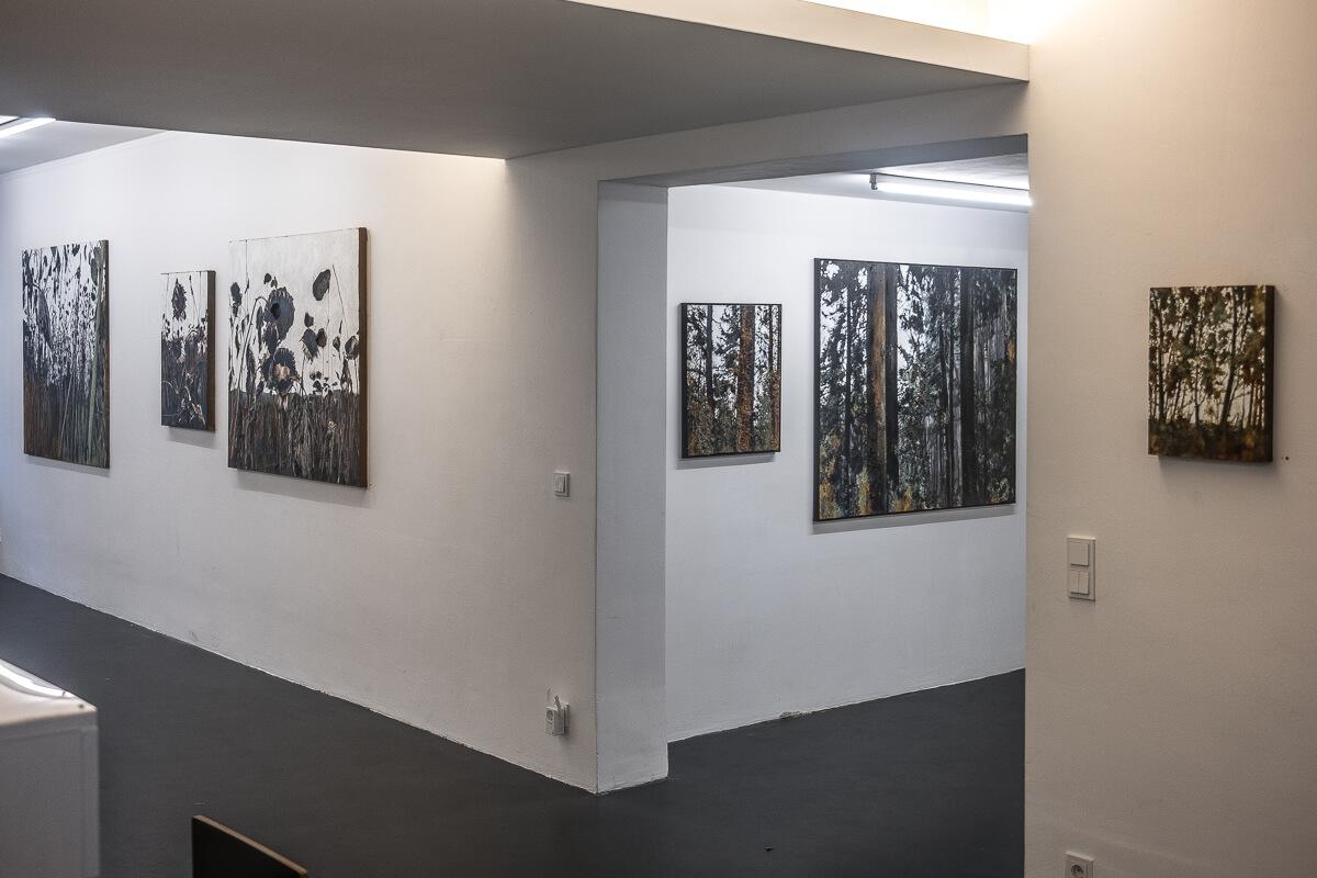 """Ausstellungsansicht: Jens Rausch """"Experimentierfeld"""""""