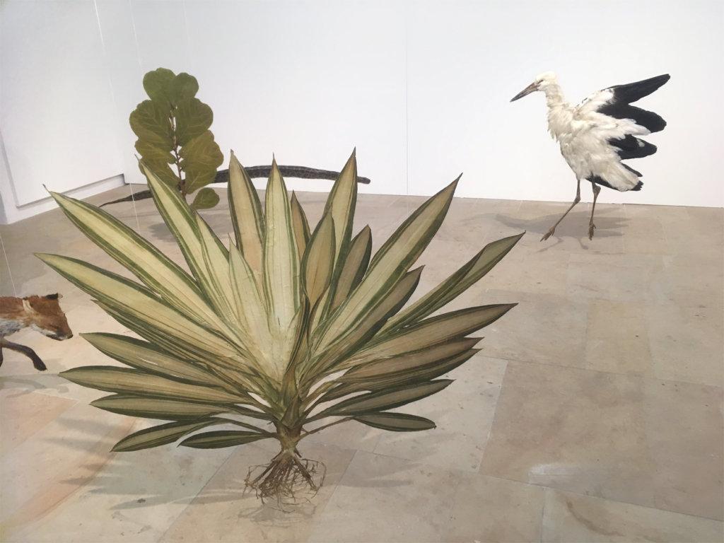 """Julius von Bismarck, """"I like the flowers"""", 2017, getrocknete und gepresste Pflanzen und Tiere auf Edelstahlplatten montiert, diverse Maße, © VG Bild-Kunst, Bonn 2018, Courtesy Sies + Höke"""