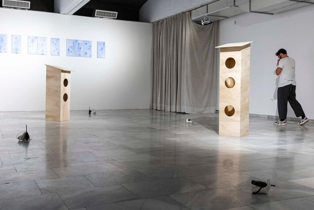 Man sieht die Installtion Habitat and Biosphere von Kalas Liebfried in der Sofia City Art Gallery.