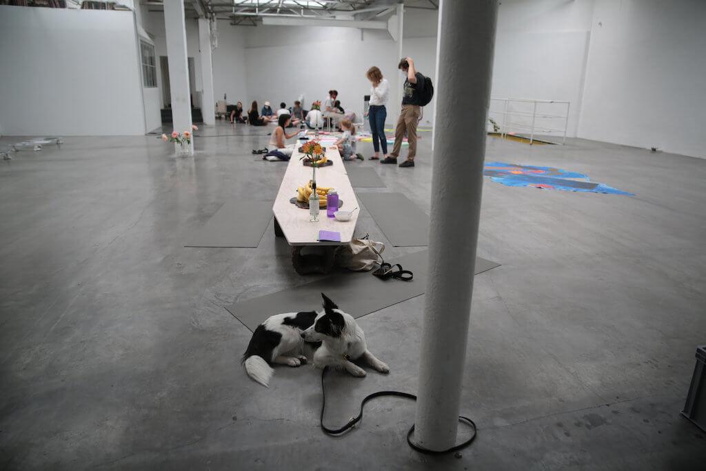"""Zu sehen ist eine Installationsansicht von """"K 2020 - This house is not a home"""" Lothringer 13 Halle. In Vordergrund ein Hund."""