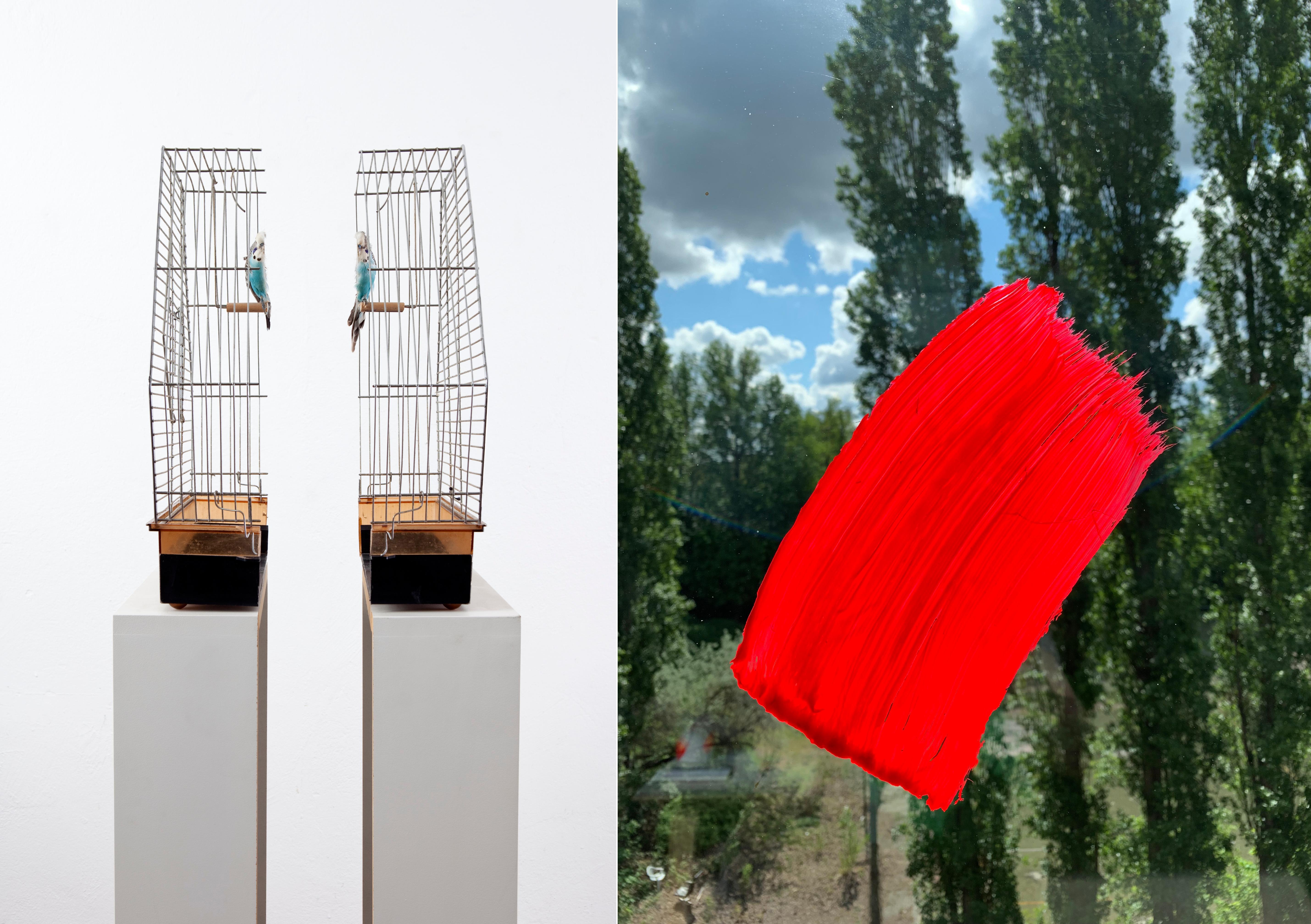 Links ein halbierter Vogelkäfig von Via Lewandowsky, rechts eine Arbeit von Karin Sander.