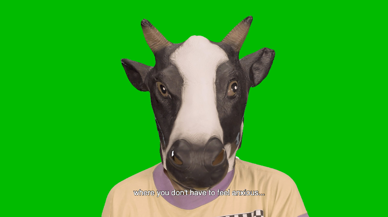 Kopf einer Kuh
