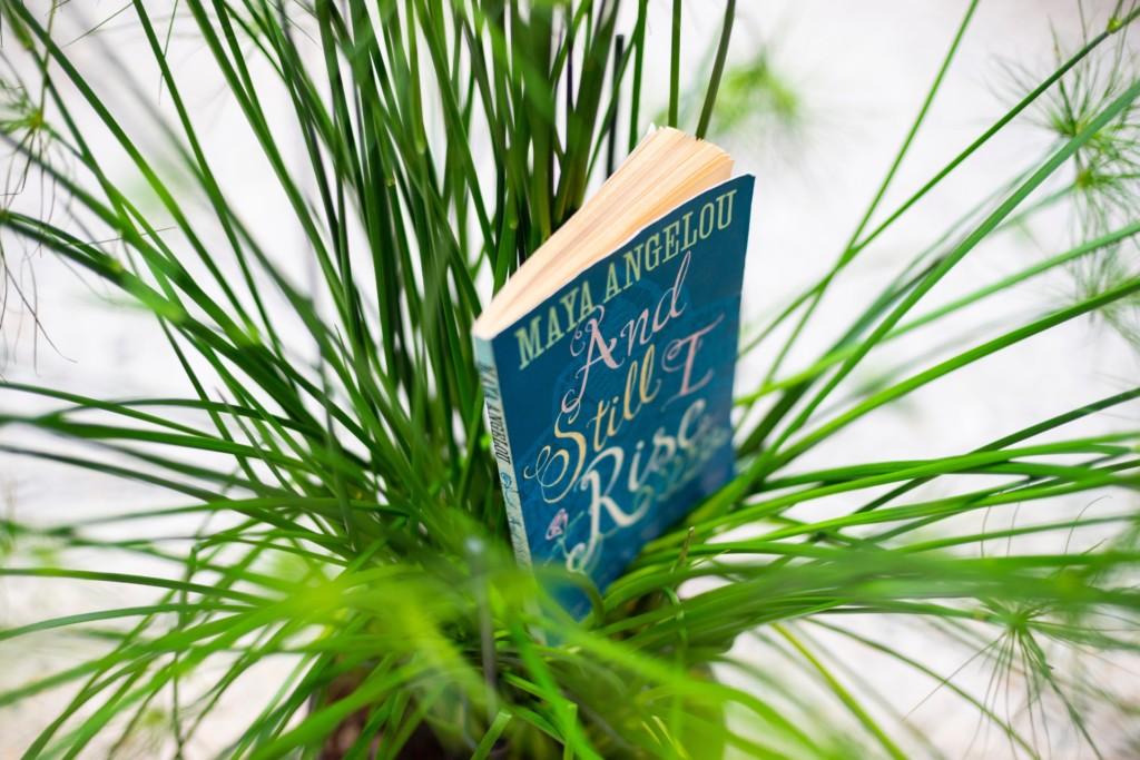 """Ein grüner Strauch mit dem Buch von Mary Angelou """"And Still I rise"""" in der Mitte. Installationsansicht von Saddie Choua, lamb chops should not be overcooked, 2019."""