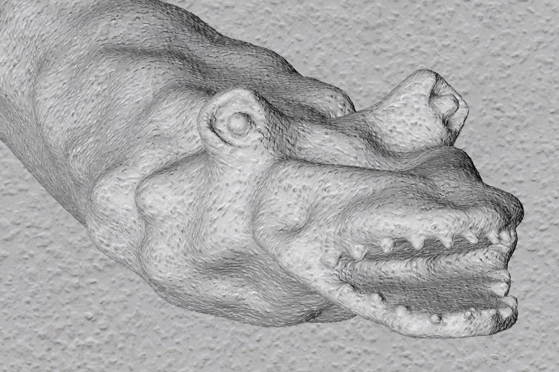 3D-Model eines Drachens von Sebastian Jung.