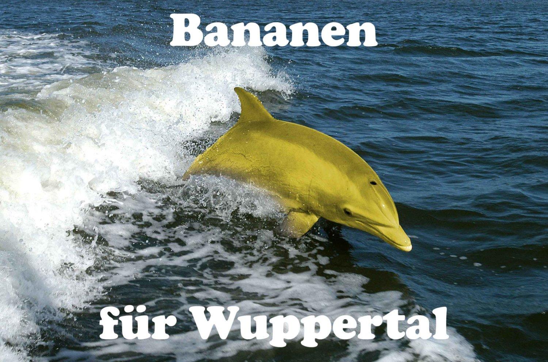 Ein gelber Delphin, der durch das tiefblaue Meer schwimmt.