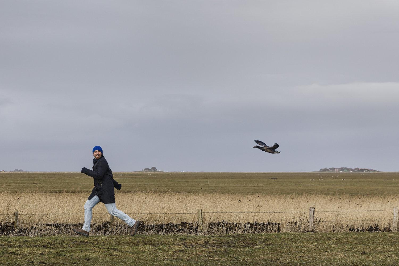 Ein Mann scheint vor einem Vogel wegzurennen.