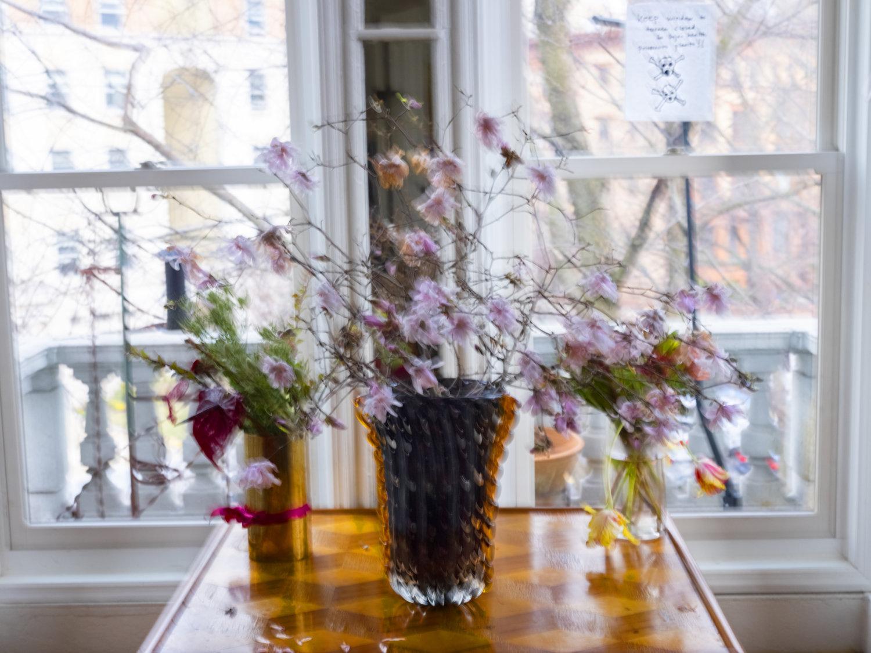 Eine verschwommene Fotografie eines Blumenstrauchs, der vor einem Fenster steht, es ist Tag und am Fenster klebt ein beschriebener Zettel