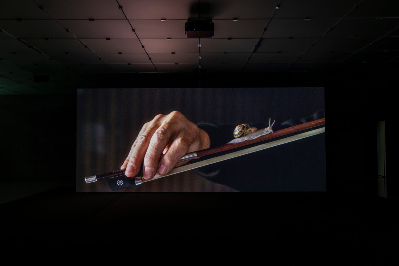 Das Bild zeigt eine Installationsansicht aus der Ausstellung Anri Salas im Kunsthaus Bregenz 2021.