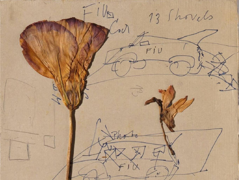 Das Bild zeigt ein Detail einer undatierten, unbetitelten Arbeit auf Papier des Künstlers Joseph Beuys.