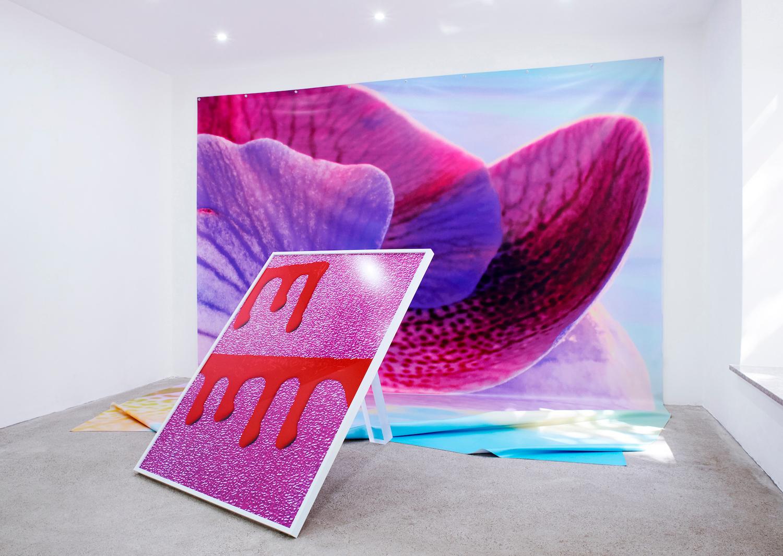 Eine Fotoarbeit in Pink lehnt vor einem Foto-Vorhang, auf dem eine Blume zu erahnen ist.